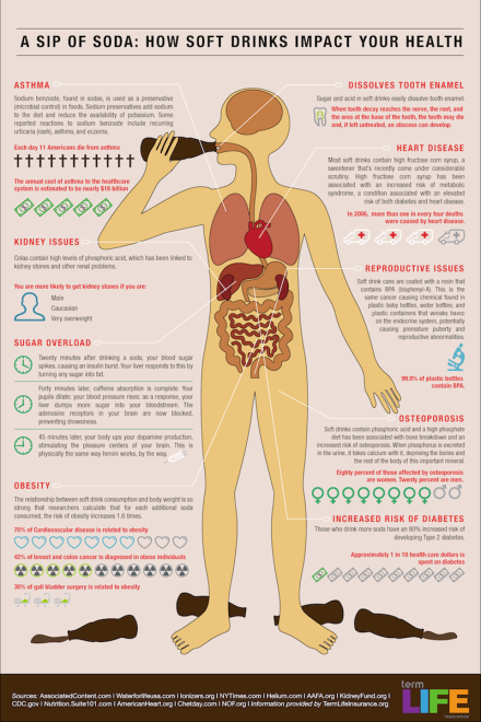 This Infographic Shows What Soda Does to Your Body